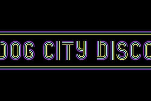 Dog City Disco -- Late Show