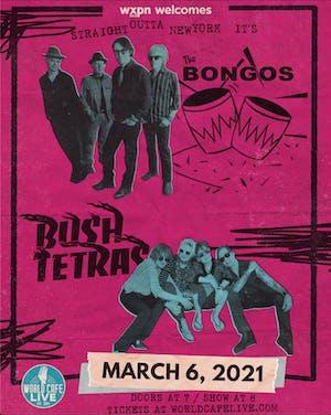The Bongos / Bush Tetras {RESCHEDULED FROM 07/17/2020}