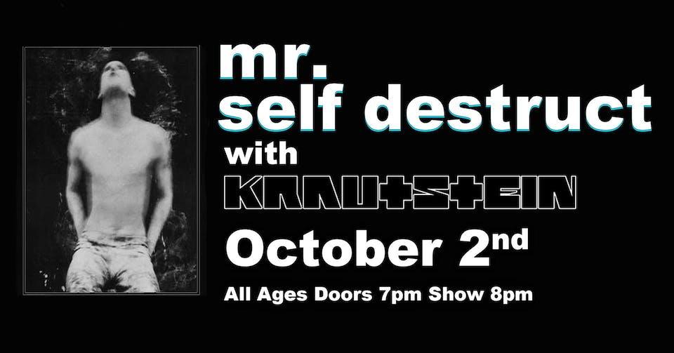 Mr. Self Destruct (Nine Inch Nails)