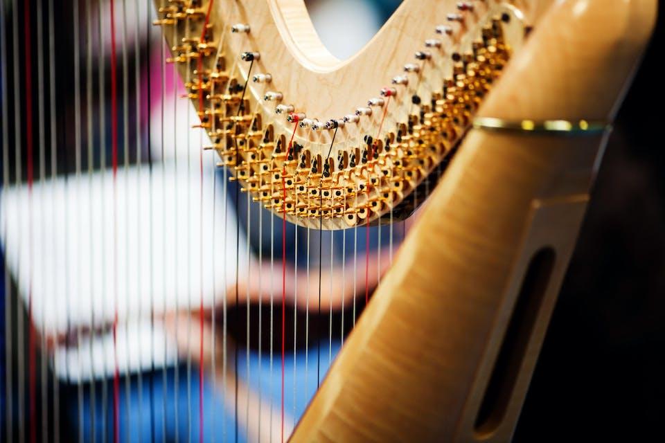 Stunning Strings