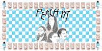 Peach Pit at 9:30 Club