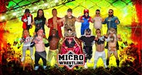 Micro Wrestling Live in The Afterlife Music Hall at Brauer House