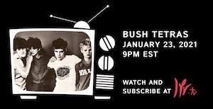 Bush Tetras Livestream