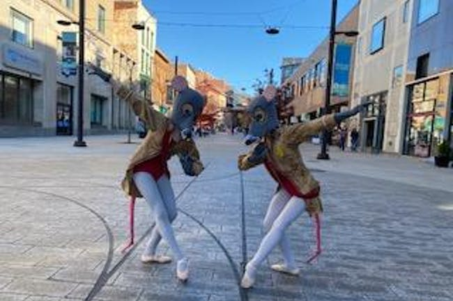 Cyber Nuts : Ithaca Ballet's first-ever virtual Nutcracker