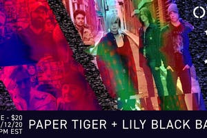 Lily Black Band , Paper Tigers x OVV