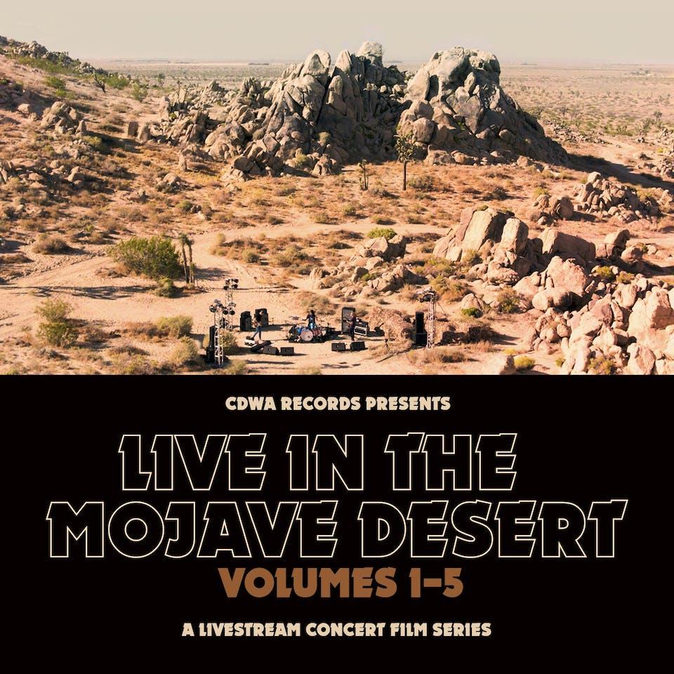 Live Stream in The Mojave Desert