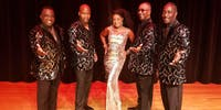 The Motowners - The Ultimate Motown Tribute