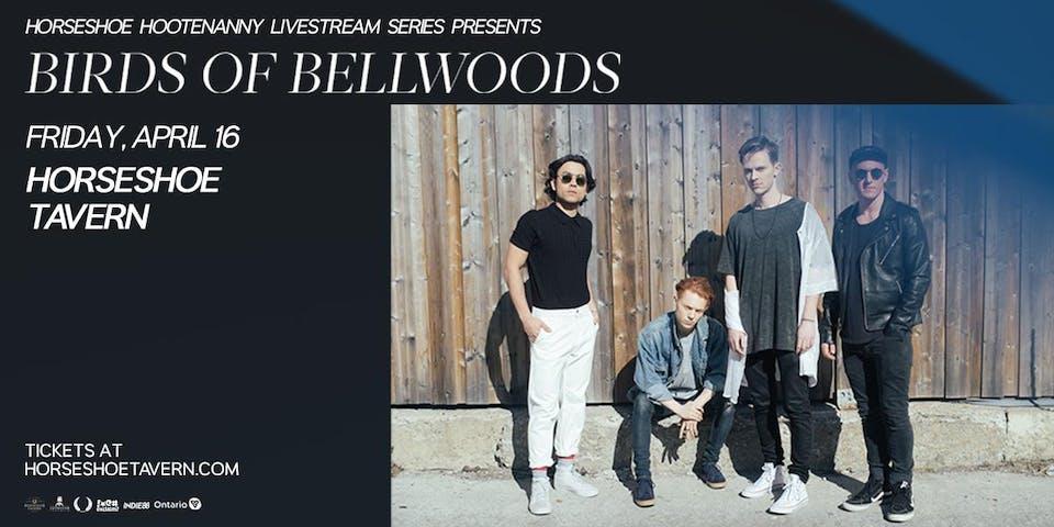 Birds of Bellwoods