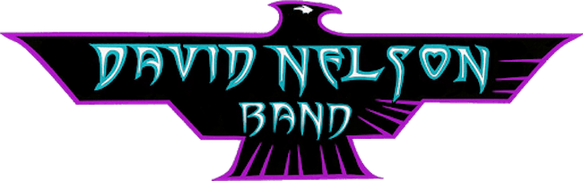 David Nelson Band (early show)