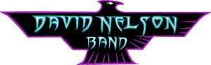 David Nelson Band (late show)
