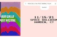 Ron Gallo, Post Animal