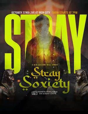 Stray Soxiety