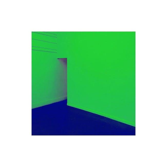 GLOCHIDS // SNEAKS // Sunn Trio // SCALE