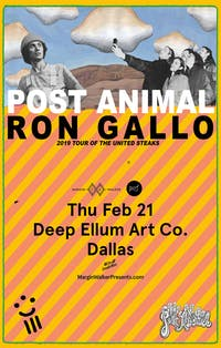 Ron Gallo • Post Animal • Duncan Fellows