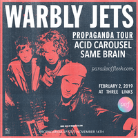Warbly Jets •  Acid Carousel • Same Brain