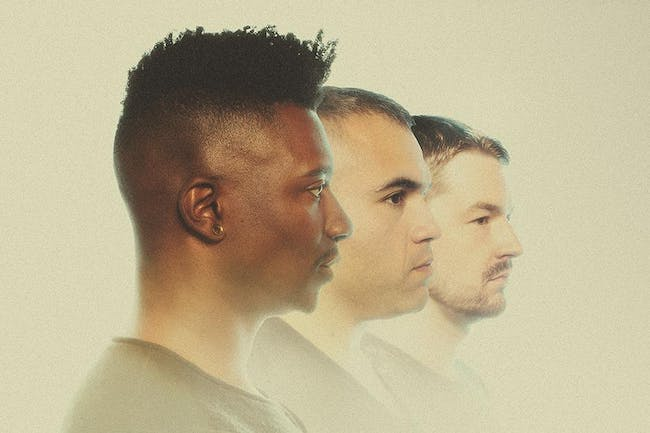 10 Years of Animals As Leaders