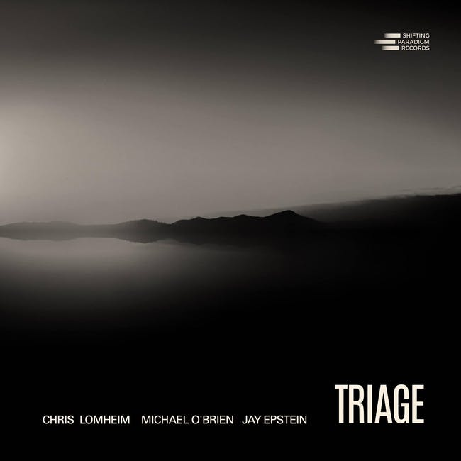 'Triage' - Lomheim / O'Brien / Epstein