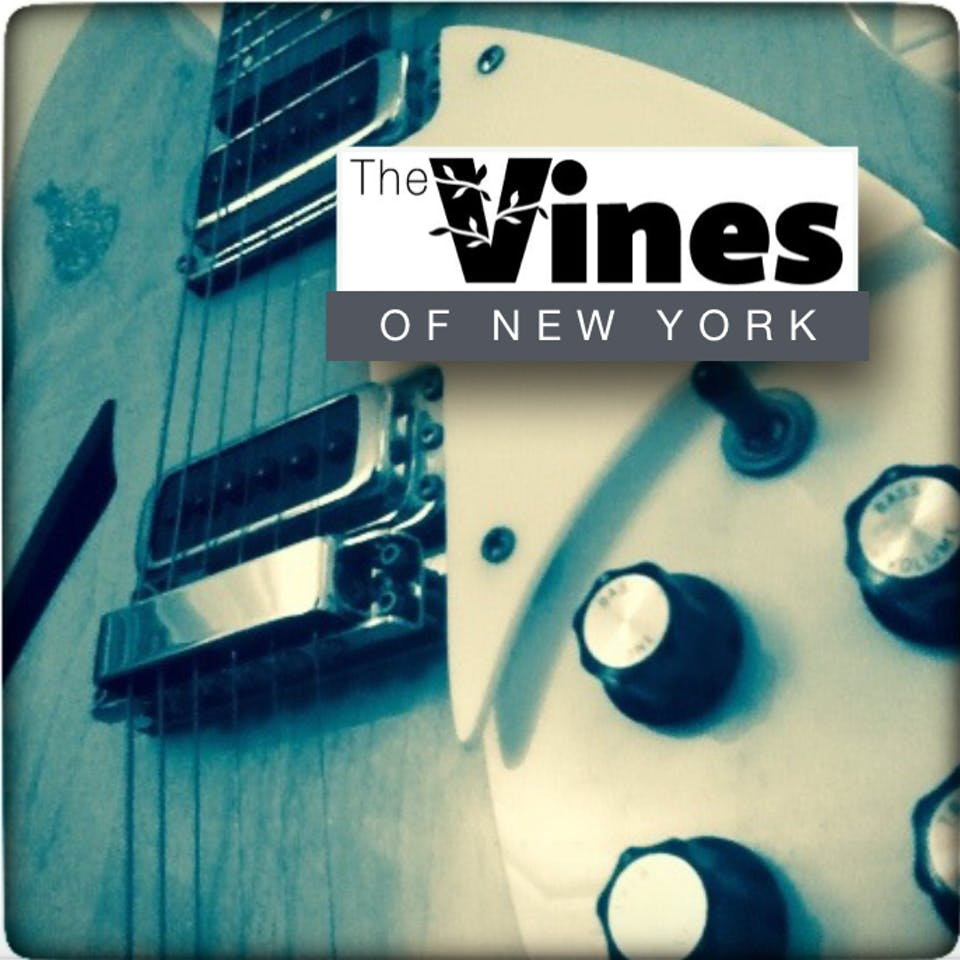 Meatbelt, Sid Kingsley, The Vines of New York, Caleb Caming and The Heat