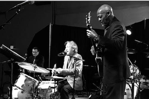 The David Basse Trio