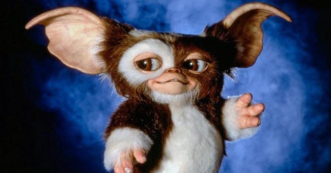 Gremlins Film Screening