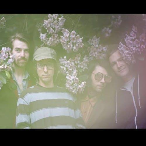 Salo Panto, Shannon Entropy, Dream Wulf