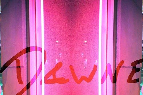 Dawne @ The Back Bar