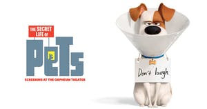 Summer Family Film Series: The Secret Life of Pets