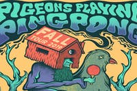 Pigeons Playing Ping Pong VIP Package Show