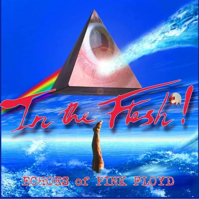 In the Flesh-Echos of Pink Floyd