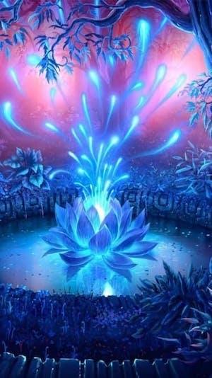 The Gaping Lotus Experience