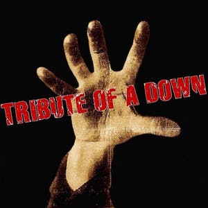 Tribute of a Down