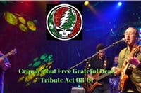 Grateful Dead Tribute Crippled but Free