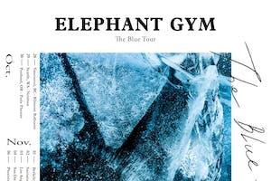 LITE & Elephant Gym