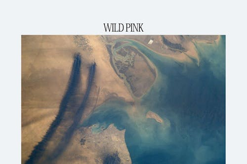 Wild Pink @ Clock-Out Lounge