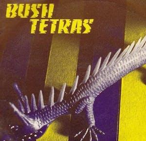 Bush Tetras / Metrolight