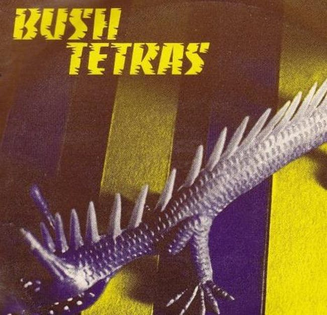 Bush Tetras / Metrolight