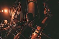 Cello Fury