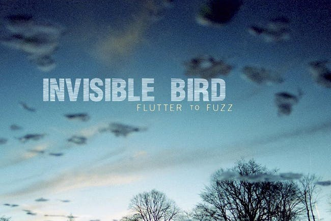 Invisible Bird