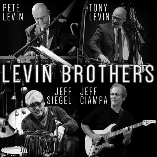 Levin Brothers • The Jazz Cats
