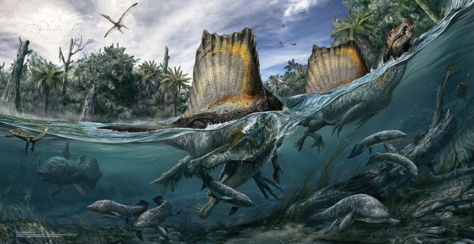 National Geographic Live: Spinosaurus: Lost Giant
