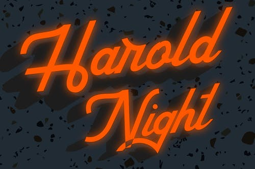 HAROLD NIGHT w/ Stunt Double & Bad Bear