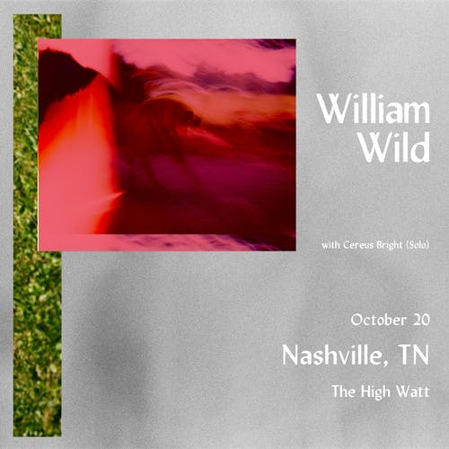 William Wild w/ Cereus Bright (Solo)