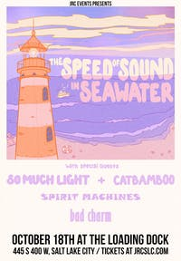 The Speed of Sound in Seawater