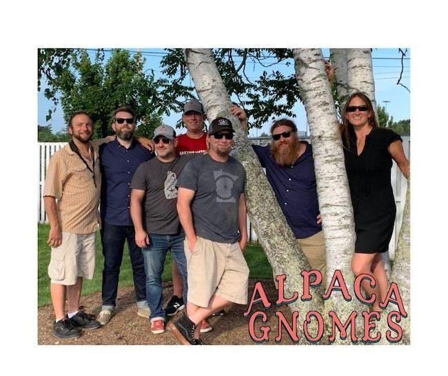 The Alpaca Gnomes