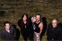 Jim Weeks Band, Dwayne Haggins Band, The Zygote Theory