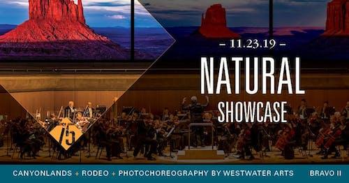 Bravo II - Natural Showcase