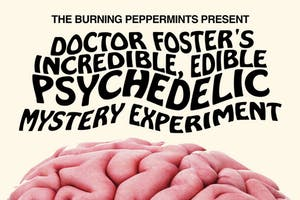 """Doctor Foster's Incredible Edible, Psychedelic Mystery Experiment"""