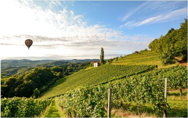 "Prohibit Night #32: ""Bragging Rights Challenge"" Burgundy VS Western Wines"