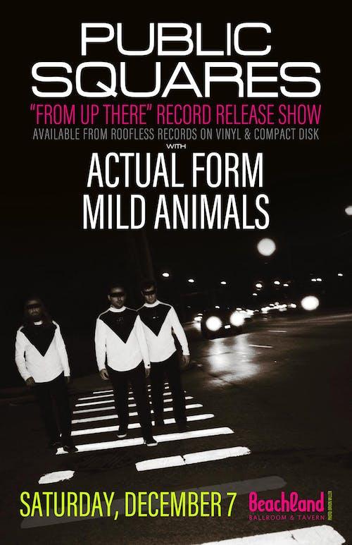 Public Squares • Actual Form • Mild Animals