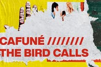 Cafuné and The Bird Calls